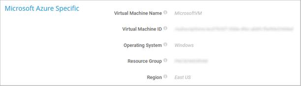 Microsoft Azure Specific